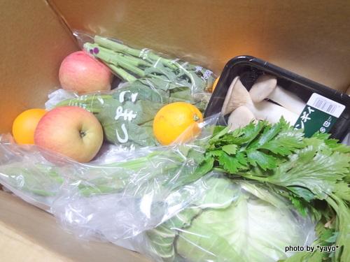 旬の野菜セット「ぱれっと」